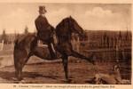 duras-rouhet-cheval-jument-18