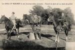 duras-rouhet-cheval-jument-5