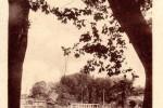sainte-foy-jardin-public-piscinel-13