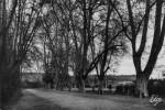 sainte-foy-jardin-public-piscinel-24