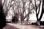 sainte-foy-jardin-public-piscinel-35