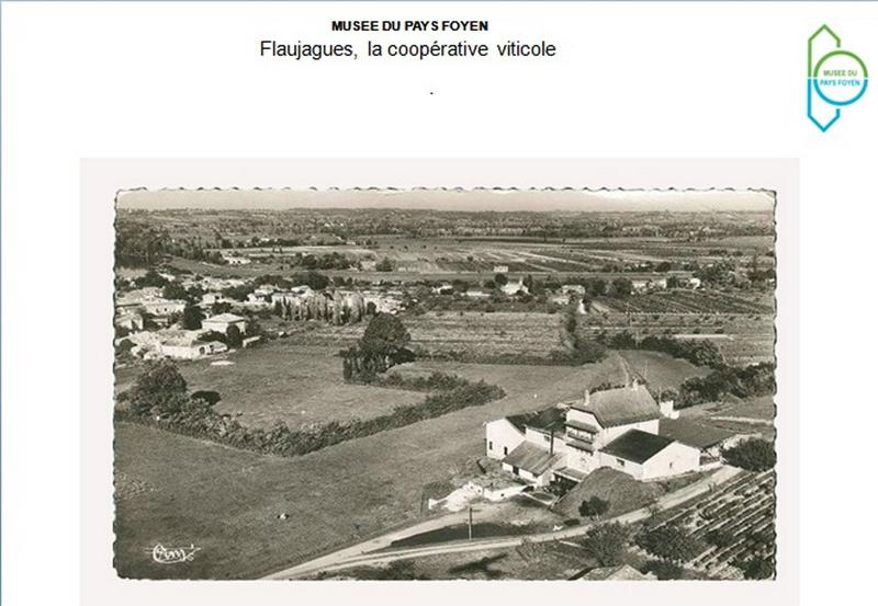 pays-foyen-72