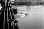 sainte-foy-inondation-1957l-3