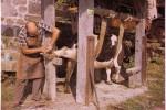 ligueux-ferrage-bovin