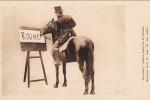 duras-rouhet-cheval-jument-12