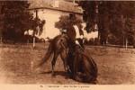 duras-rouhet-cheval-jument-28