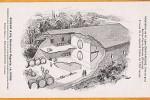 sainte-foy-la-grande-entreprise-grenouilleau-1