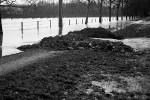 sainte-foy-inondation-1957l-10