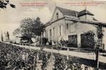 saint-andre-et-appelles-3