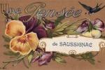 saussignac-a-6